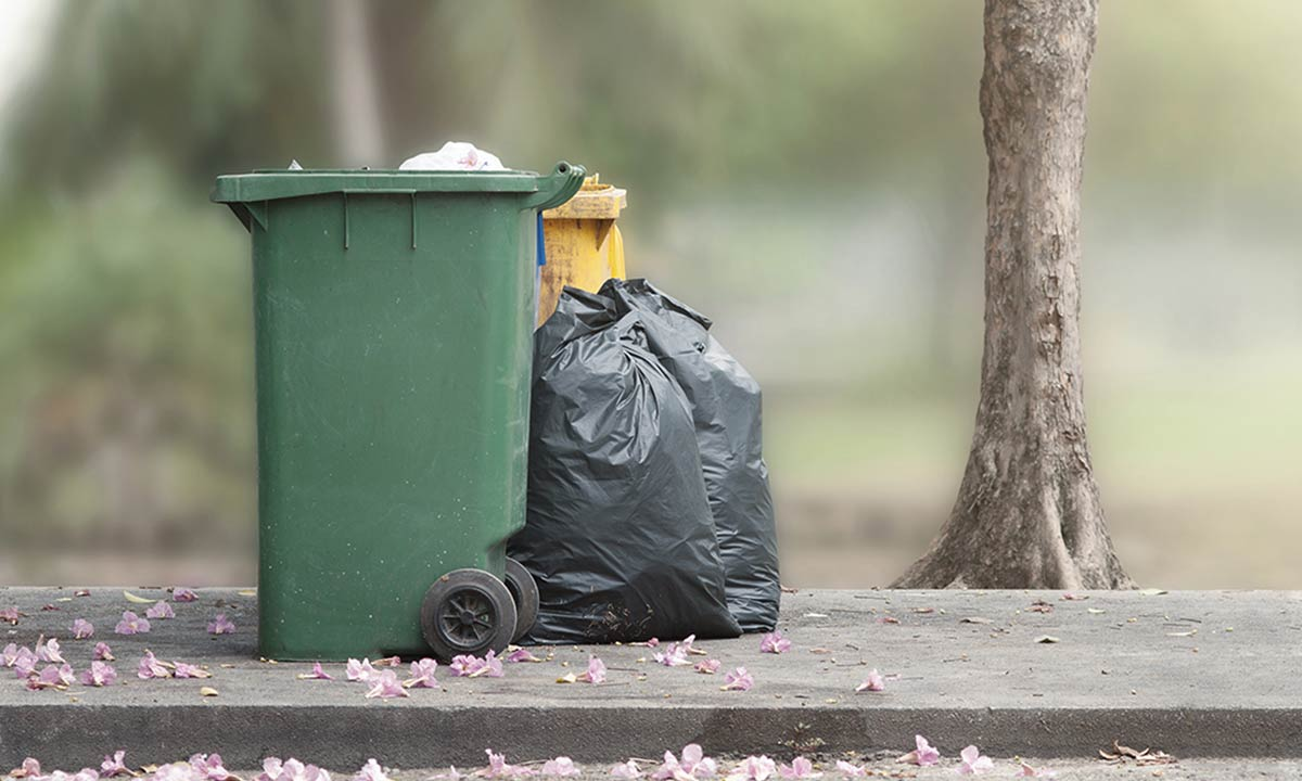 DYK: Garbage Can Cost You